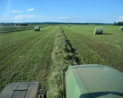 Hay-mix
